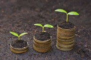 plants growing from coins from istock